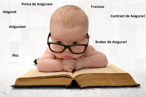 10 Termeni importanti in domeniul asigurarilor